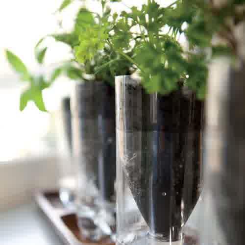 pot-bunga-dari-botol-bekas