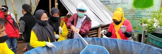 Dekan III Fakultas Teknologi Industri (FTI) ITN Malang Drs. Sumanto, MSi, memanen lele bersama warga