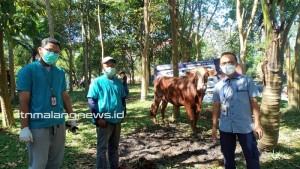 Momen Iduladha 1442 H, ITN Malang Berbagi Daging Kurban untuk Kemaslahatan Bersama